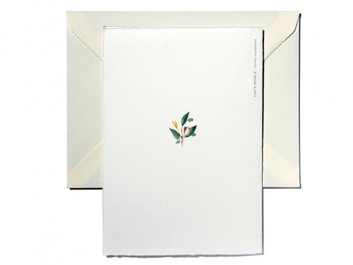 Ob Privat oder für Firmenkunden, diese Weihnachtskarte mit ihrem fröhlichen Aquarell-Kranz wird jeden Erfreuen. Personalisierbar ab 20 Karten.